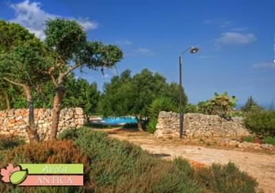 Agriturismo Turismo Rurale Avola Antica